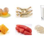 シアル酸を含んでいる食品