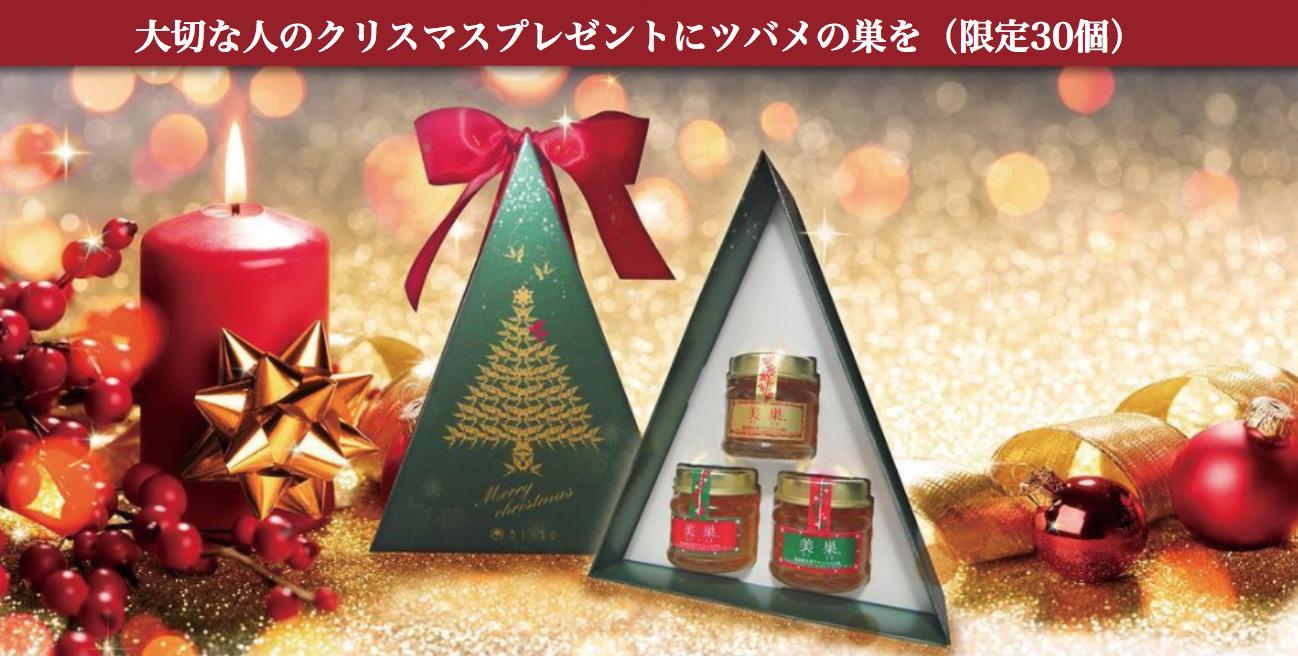 美巣クリスマス限定プレゼント